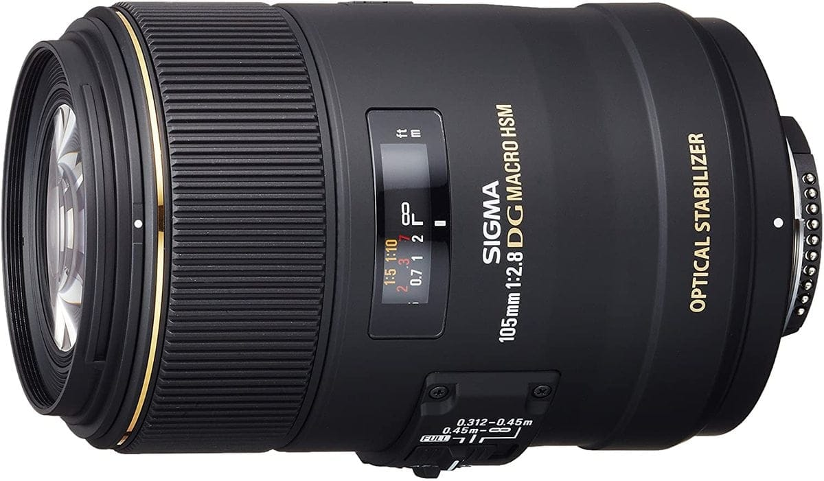 sigma-macro-lens-for-forest-photography