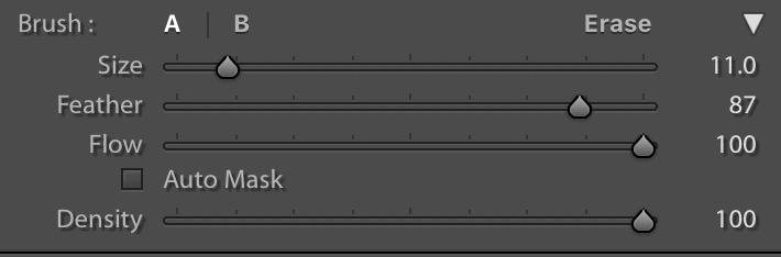 brush-customization-panel