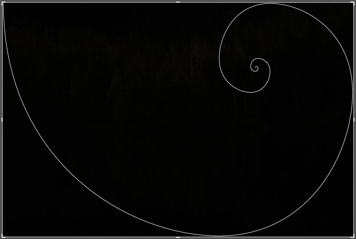 golden-spiral-crop-overlay-lightroom