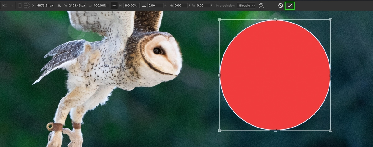 how-to-deselect-in-photoshop-11