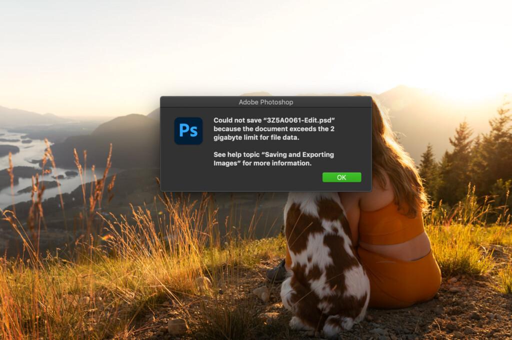 photoshop-file-too-big-to-save-help-2