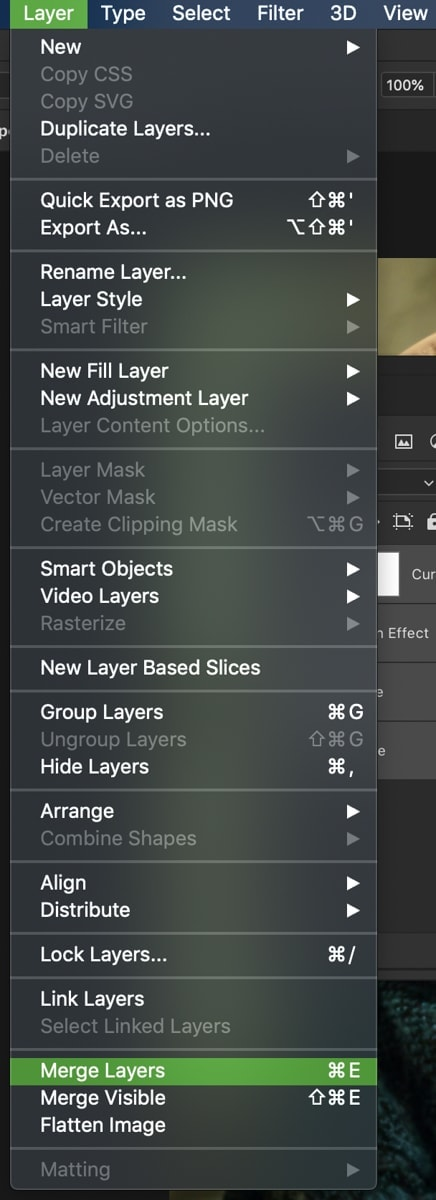 how-to-merge-layers-in-photoshop-8