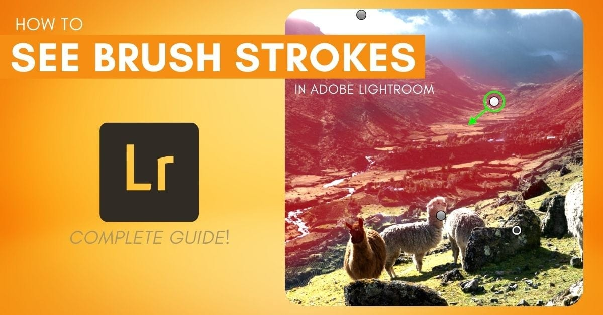 How To See & Edit Brush Strokes In Lightroom