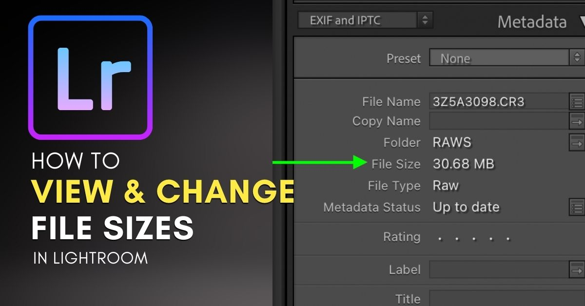 How To See File Sizes In Lightroom (And Change Them!)